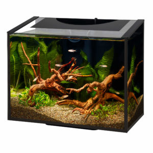 AQUEON ASCENT FRAMELESS AQURARIUM KIT