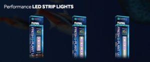 LED Aquarium Lights