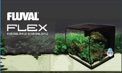 Fluval Aquarium, decorating, plants