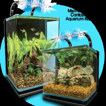 jm aquatics and pet center images
