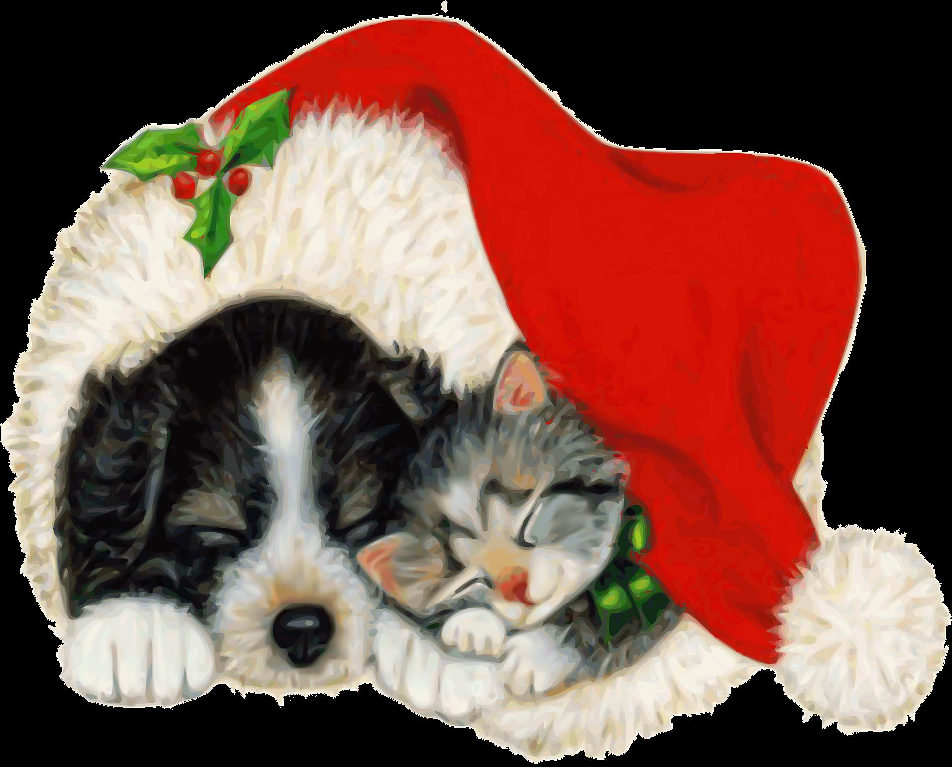 merry christmas promo