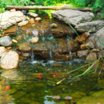 Spring Outdoor Pond Maintenance