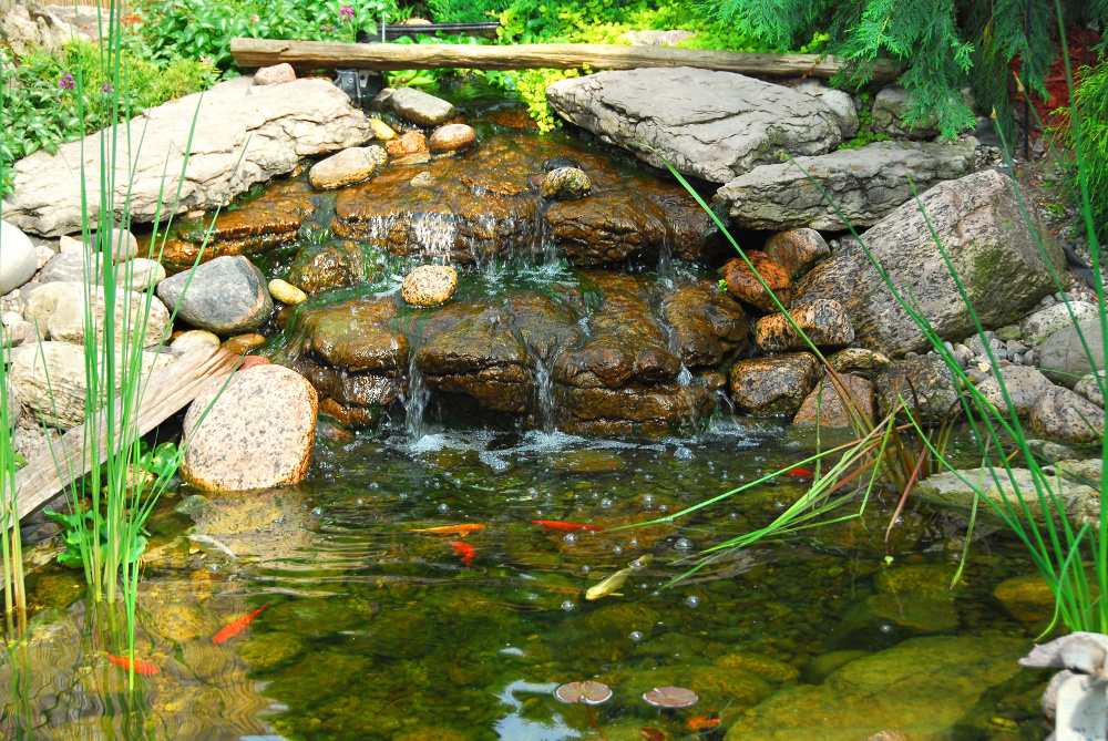 Spring Outdoor Pond Maintenance
